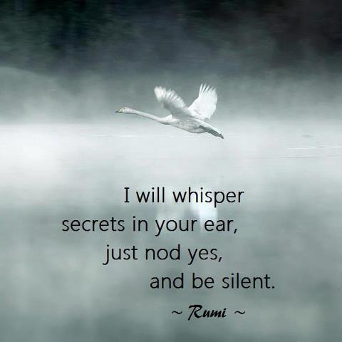 mind-silence-rumi